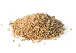 What is Farro? Delicious!